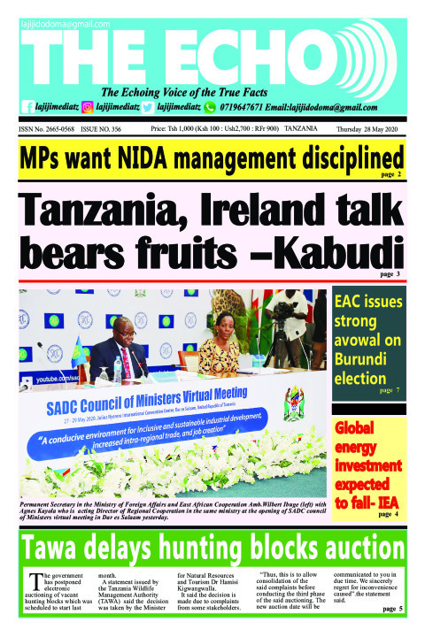 Tanzania, Ireland talk bears fruits –Kabudi | The ECHO