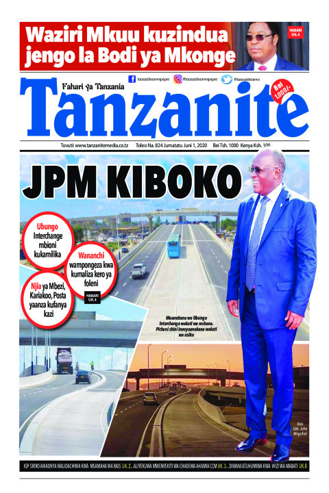 JPM kiboko | Tanzanite