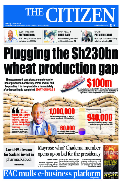 Plugging the Sh230bn wheat production gap | The Citizen