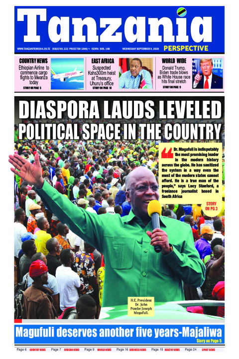 Diaspora lauds leveled political space in the country | Tanzania Perspective