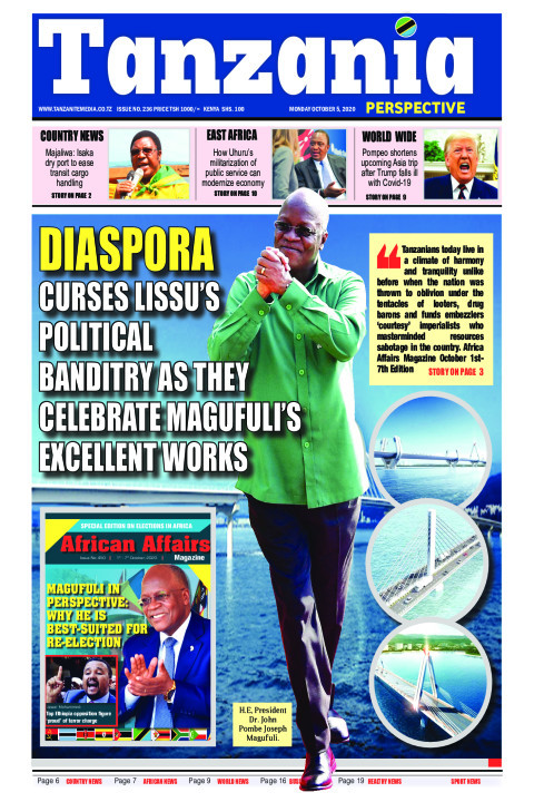 Diaspora curses Lissu's political banditry as they celebrate | Tanzania Perspective