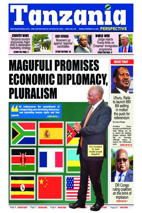 Magufuli promises economic diplomacy, pluralism  | Tanzania Perspective