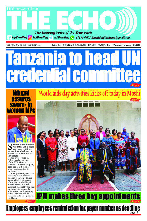 Tanzania to head UN credential committee | The ECHO