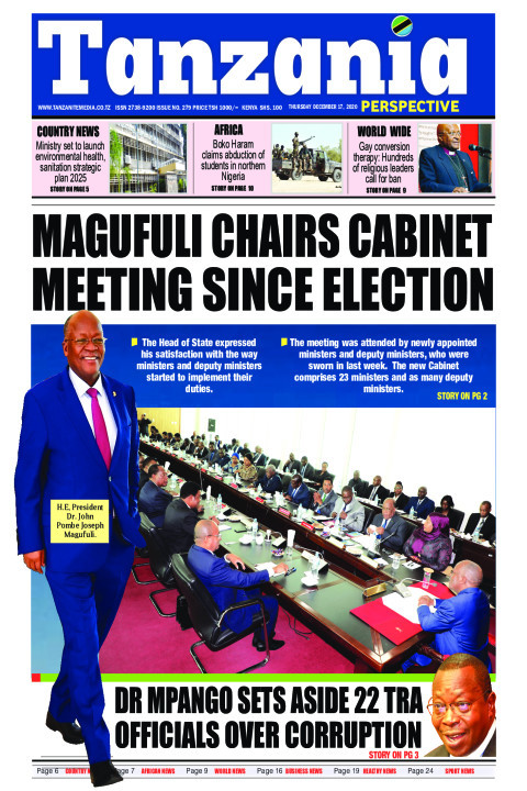 MAGUFULI CHAIRS CABINET MEETING SINCE ELECTION | Tanzania Perspective
