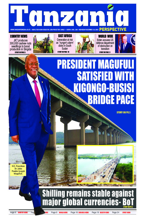 President Magufuli satisfied with Kigongo-Busisi Bridge pace | Tanzania Perspective