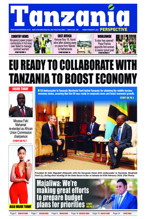 EU ready to collaborate with Tanzania to boost Economy | Tanzania Perspective