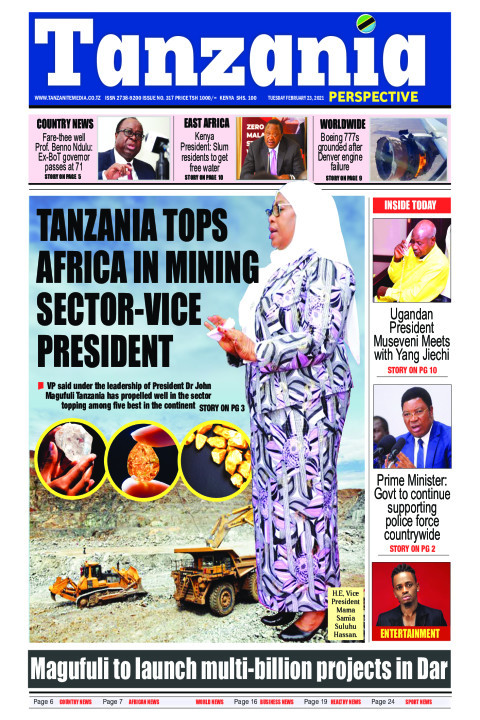 Tanzania heads Africa in mining sector-Vice President | Tanzania Perspective
