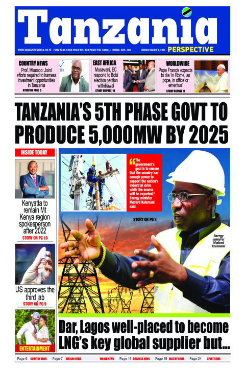 Tanzania's 5th phase Govt to produce 5,000MW by 2025 | Tanzania Perspective