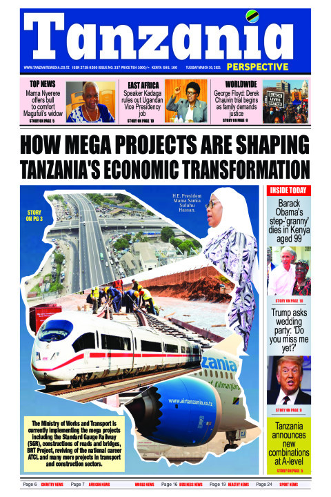 HOW MEGA PROJECTS ARE SHAPING TANZANIA'S ECONOMIC TRANSFORMA | Tanzania Perspective