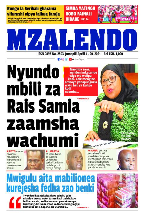 Nyundo mbili za Rais Samia zaamsha wachumi | Mzalendo