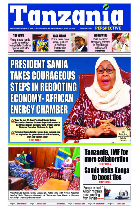 President Samia takes courageous steps in rebooting economy- | Tanzania Perspective