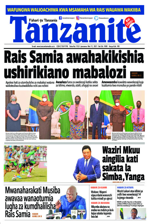 Rais Samia awahakikishia ushirikiano mabalozi | Tanzanite