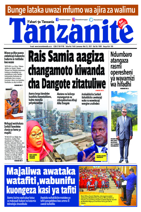 Rais Samia aagiza changamoto kiwanda cha Dangote zitatuliw | Tanzanite