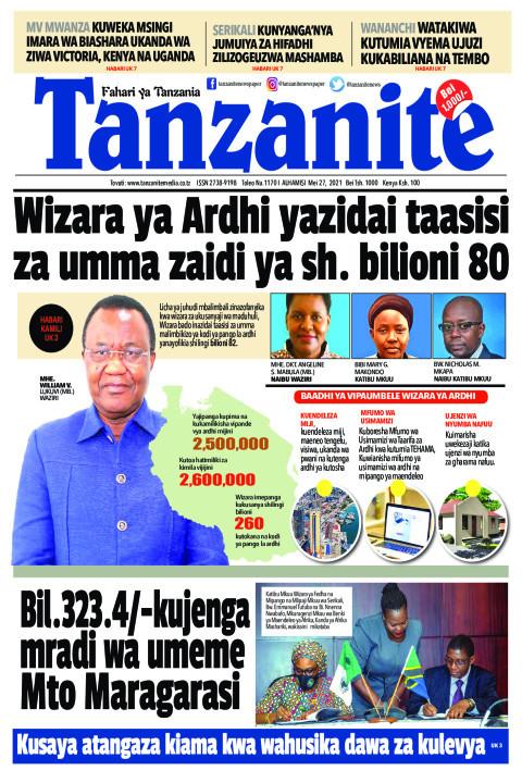 Wizara ya Ardhi yazidai taasisi za umma zaidi ya sh. bilion | Tanzanite