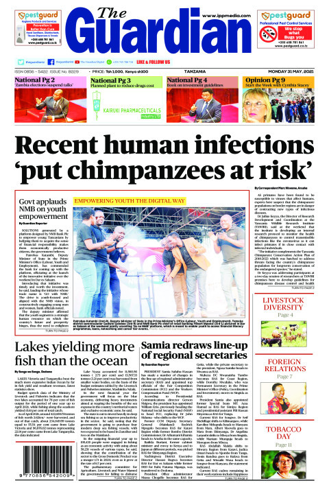 Recent human infections 'put chimpanzees at risk' | The Guardian