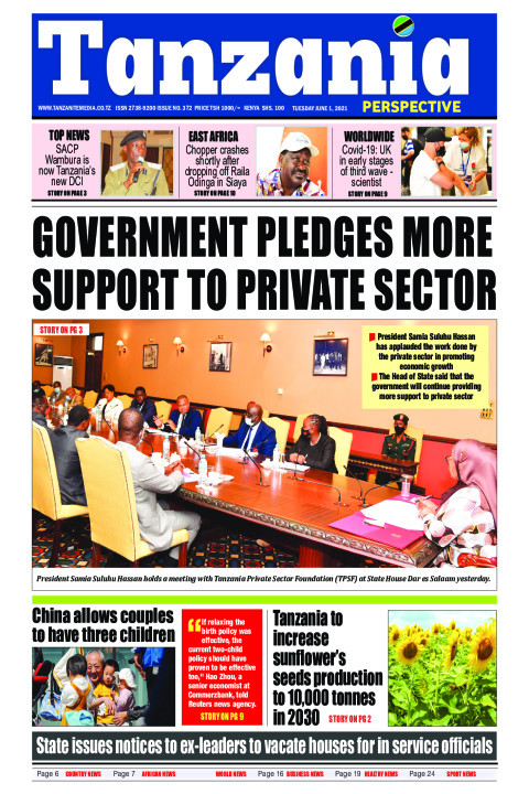 Govt pledges more support to private sector | Tanzania Perspective
