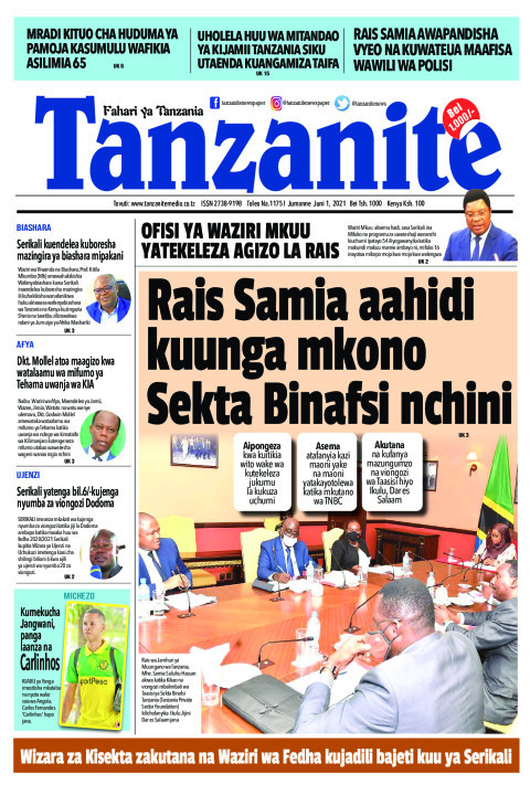 Rais Samia aahidi kuunga mkono Sekta Binafsi nchini | Tanzanite