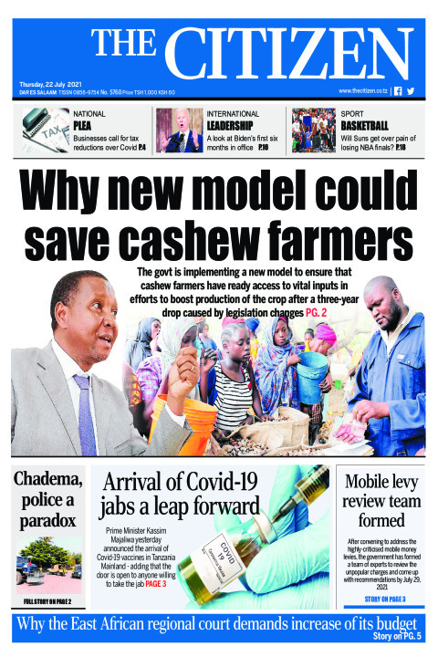 WHY NEW MODEL COULD SAVE CASHEW FARMERS  | The Citizen